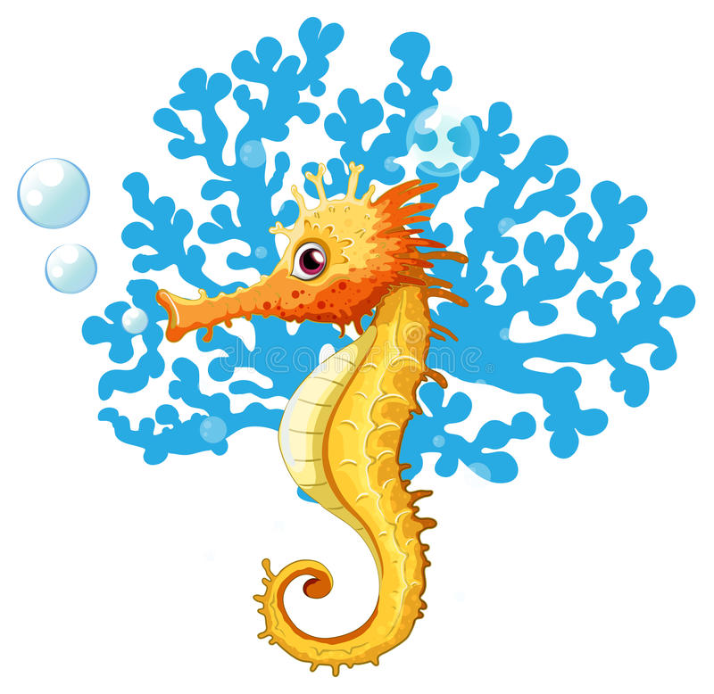 Free A Seahorse Underwater Stock Image - 48026311