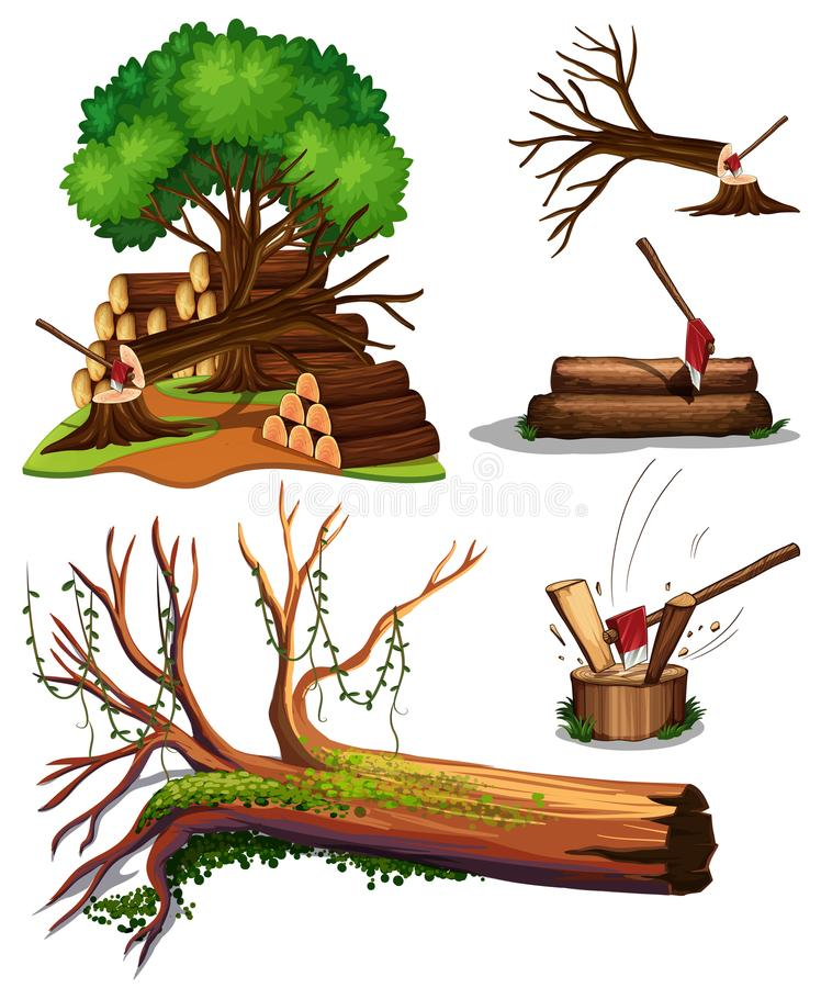 Free A Set Of Tree Being Cut Royalty Free Stock Photography - 121138467