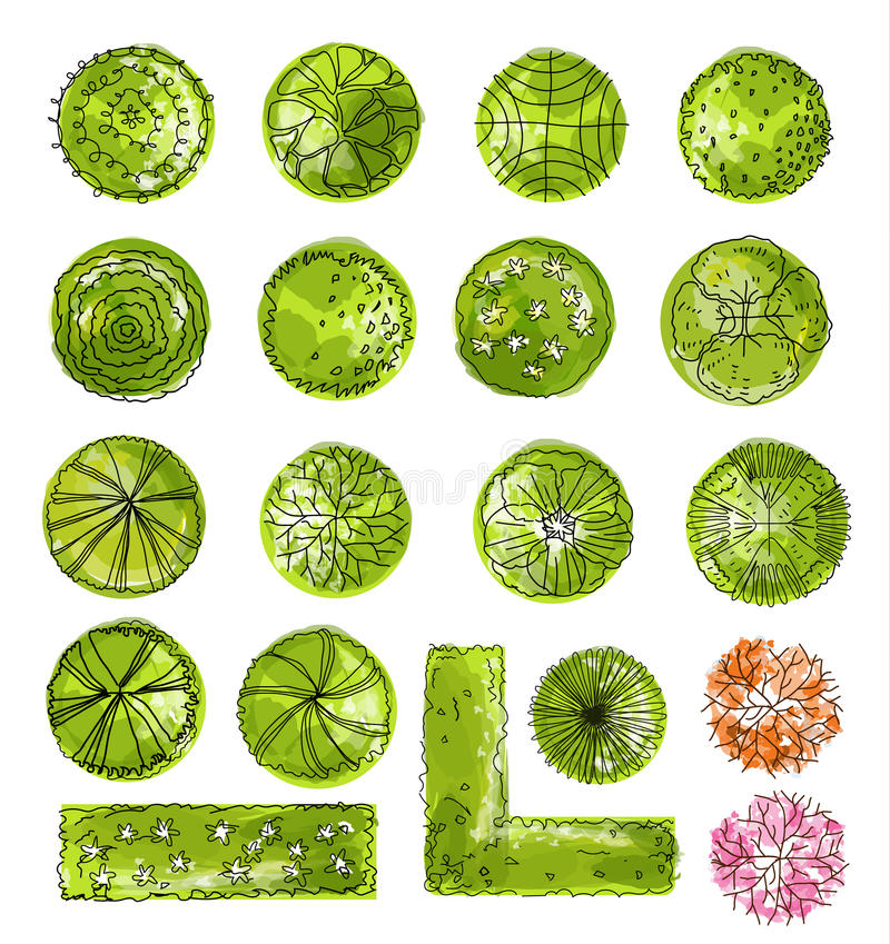 Free A Set Of Treetop Symbols, For Architectural Or Landscape Design. Stock Photo - 65395590