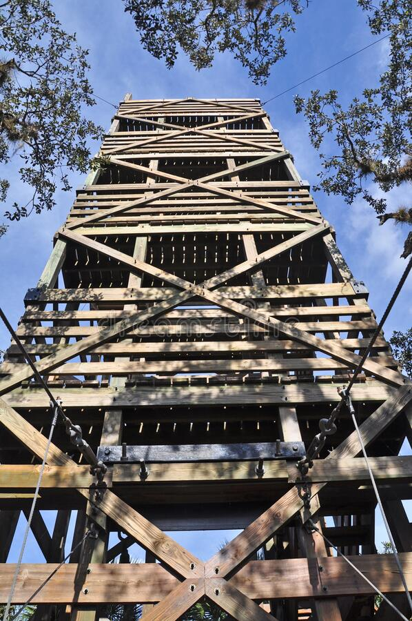 Free A Wooden Observation Tower Connected To The Canopy Walk At Myakka. Stock Images - 177071364