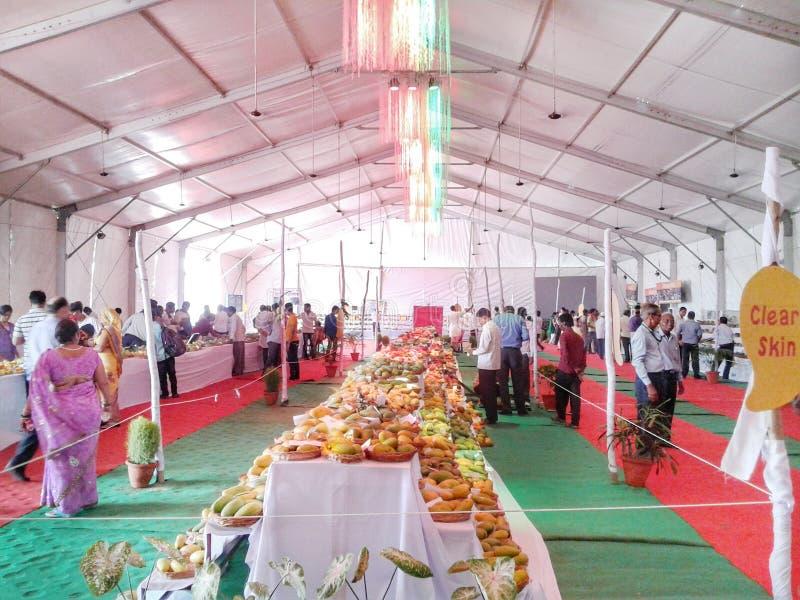 Aam Festival stock foto's