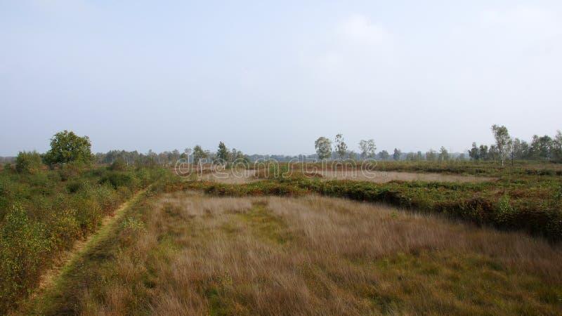 Aamsveen nära Enschede arkivbilder