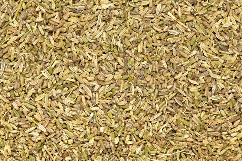 Aan de lucht gedroogde organische Venkel Foeniculum vulgare royalty-vrije stock fotografie