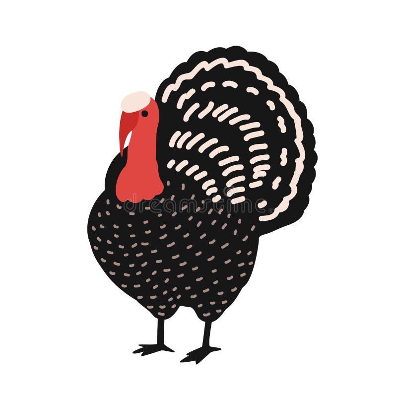 Aanbiddelijk die Turkije op witte achtergrond wordt geïsoleerd Vermakelijke landbouwbedrijfgevogelte, binnenlandse of boerenerfvo vector illustratie