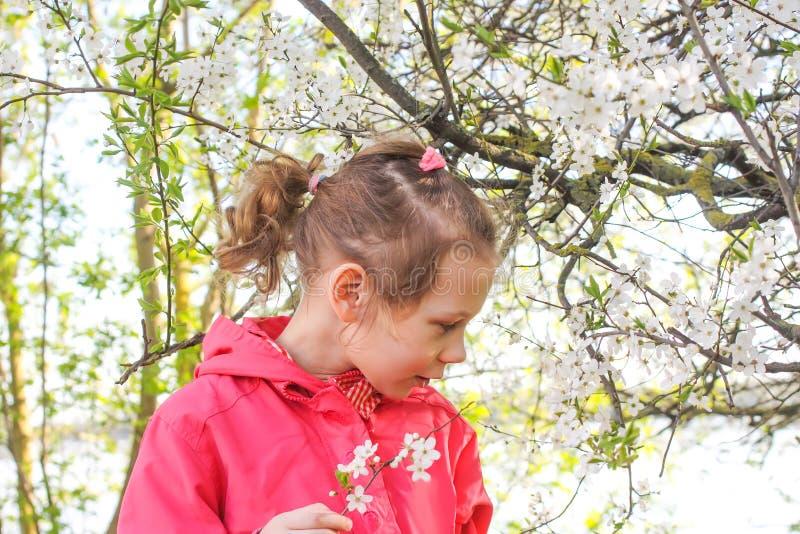 Aanbiddelijk meisje die in de lentepark lopen royalty-vrije stock foto's