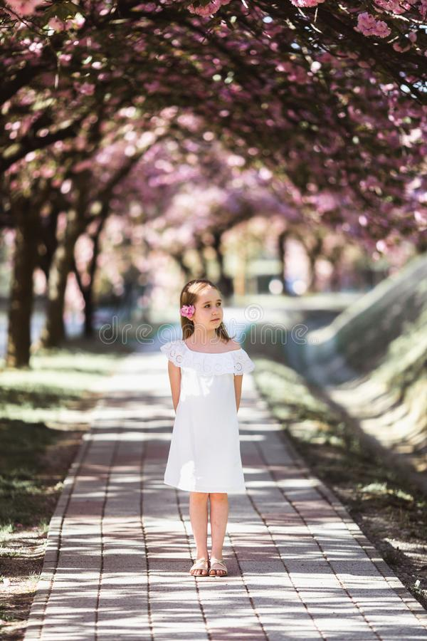 Aanbiddelijk meisje in witte kleding in bloeiende roze tuin op mooie de lentedag stock foto's