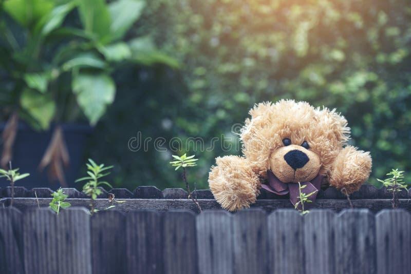 Aanbiddelijk Pluizig Teddy Bear in het park Uitstekende stijl stock afbeelding