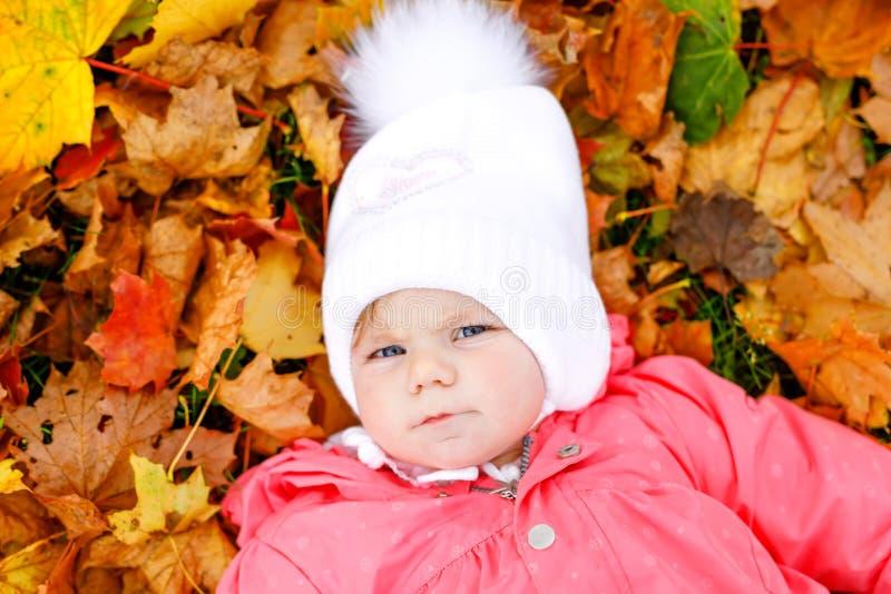 Aanbiddelijk weinig babymeisje in de herfstpark op koude oktober-dag met eik en esdoornblad Het gebladerte van de daling De openl royalty-vrije stock foto's