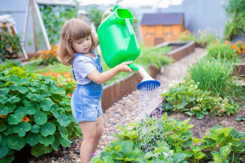 Aanbiddelijke meisje het water geven installaties in de tuin stock afbeelding