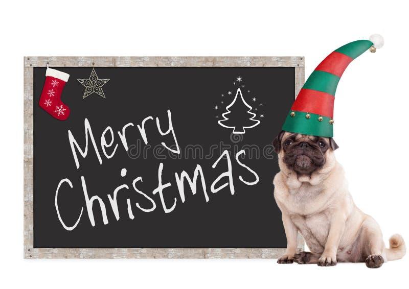 Aanbiddelijke pug puppyhond die een elfhoed dragen, die naast bordteken zitten met tekst vrolijke Kerstmis, op witte achtergrond stock afbeeldingen