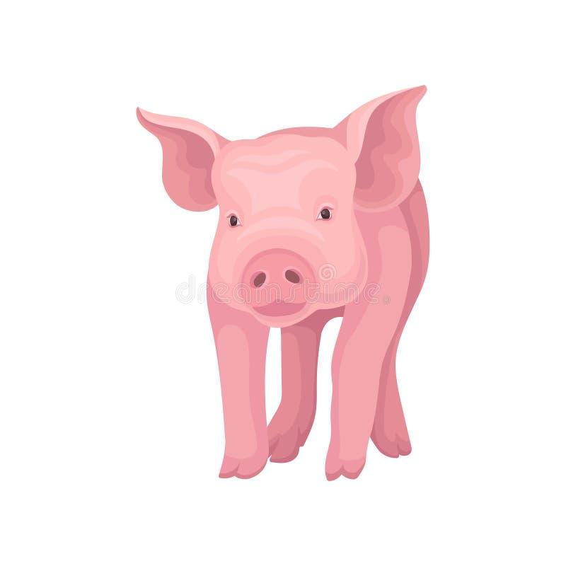 Aanbiddelijke roze varken status geïsoleerd op witte achtergrond Landbouwbedrijfdier met vlakke snuit, hoeven en afluisteraar Vec royalty-vrije illustratie