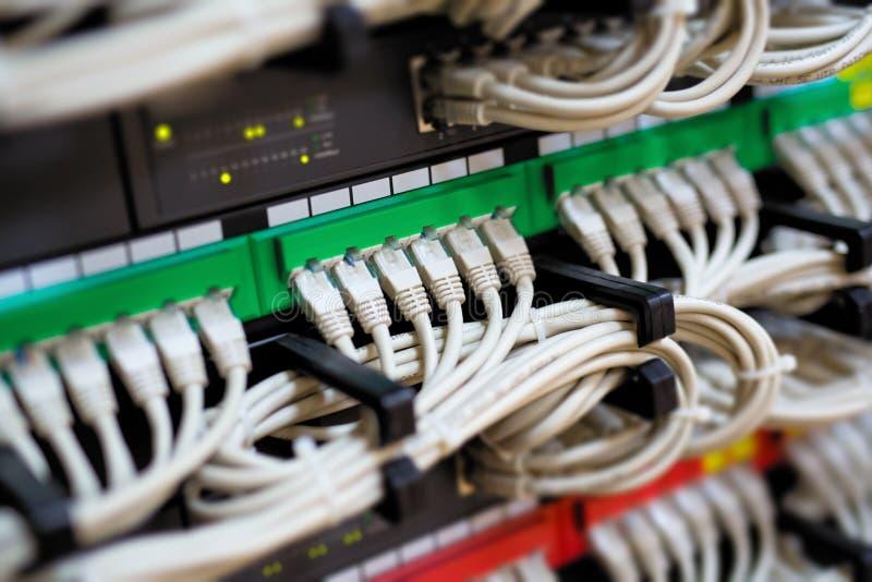 Aangesloten netwerkschakelaar en ethernet kabels stock afbeeldingen