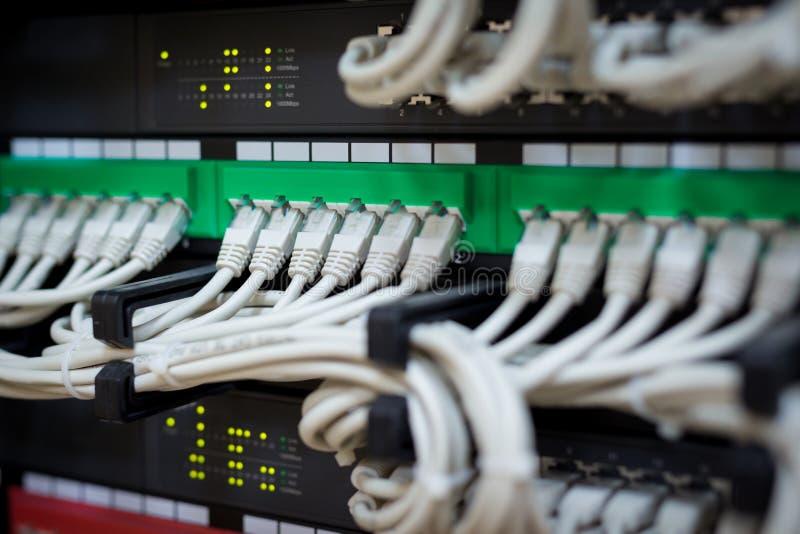 Aangesloten netwerkschakelaar en ethernet kabels stock foto's
