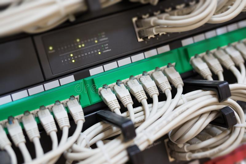 Aangesloten netwerkschakelaar en ethernet kabels royalty-vrije stock afbeeldingen