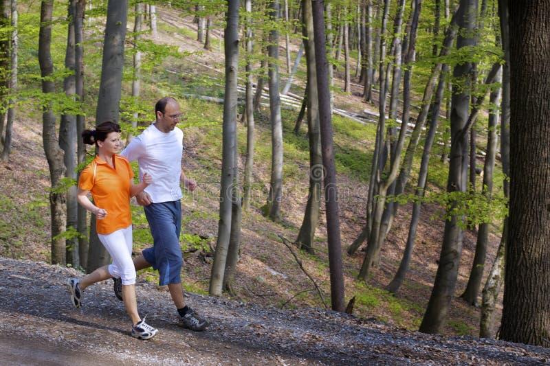Aanstotend paar in bos stock afbeelding