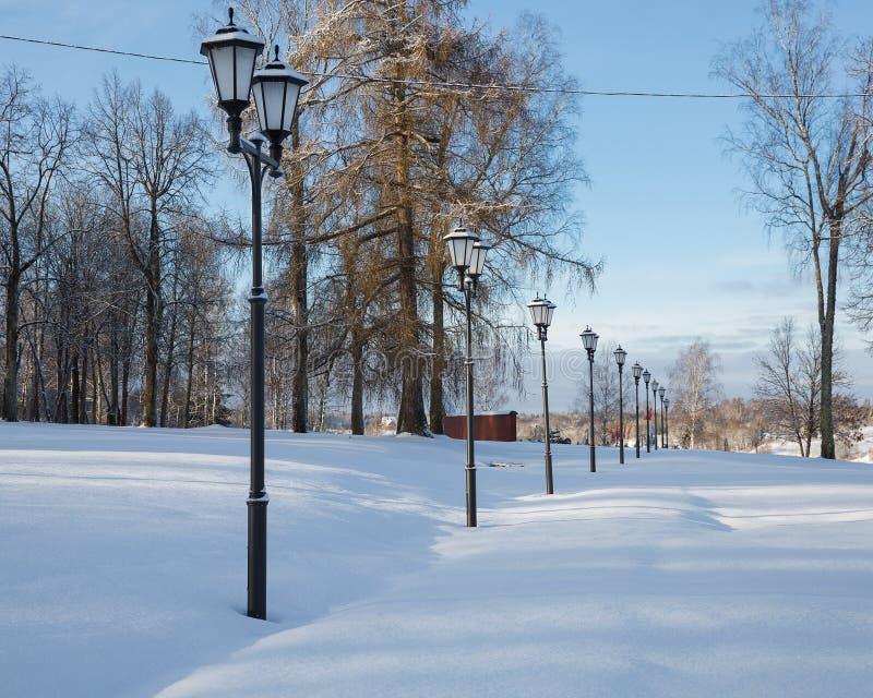 Aantal lantaarnpalen op een sneeuwvlakte stock fotografie