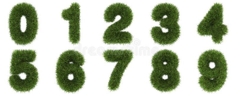 Aantallen van groen grasconcept Geïsoleerd op wit stock illustratie