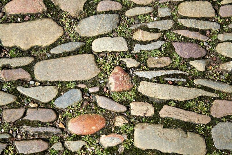 Aantrekkelijk cobblestoned weg stock afbeelding