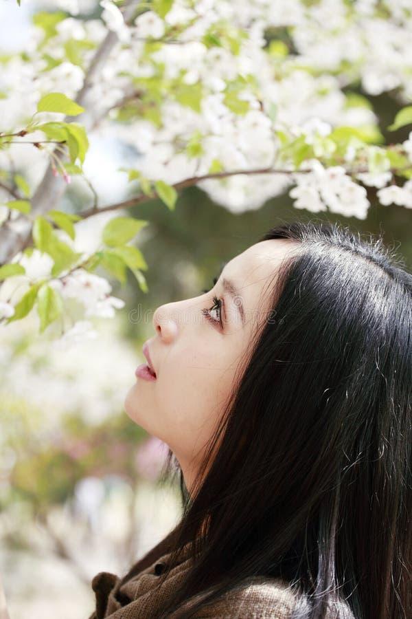 Aantrekkelijk meisje in de lente stock afbeeldingen
