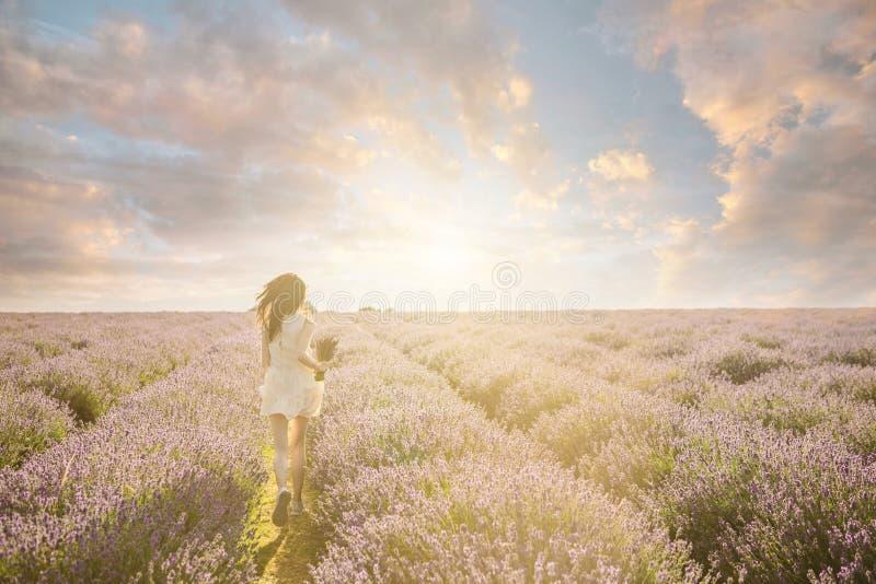 Aantrekkelijk slank meisje op het verbazende lavendelgebied royalty-vrije stock foto's