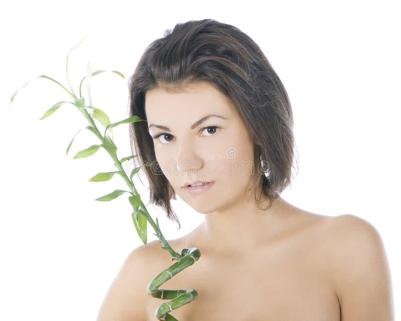 Aantrekkelijke brunette met bamboe over wit stock afbeelding