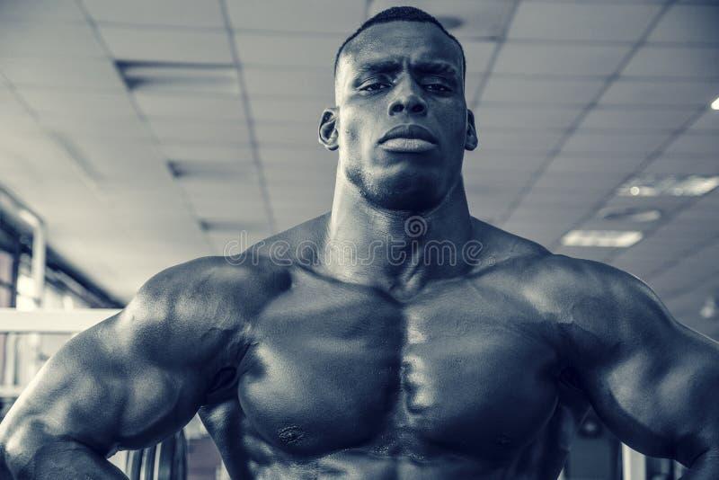 Aantrekkelijke hunky zwarte mannelijke bodybuilder in gymnastiek royalty-vrije stock afbeeldingen