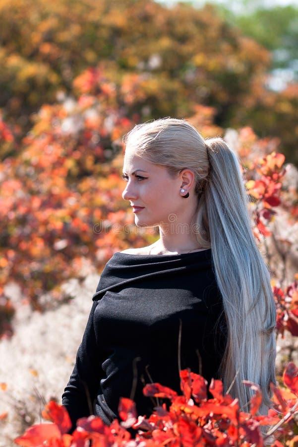 Aantrekkelijke jonge vrouw met lang mooi blondehaar die ou stellen stock foto