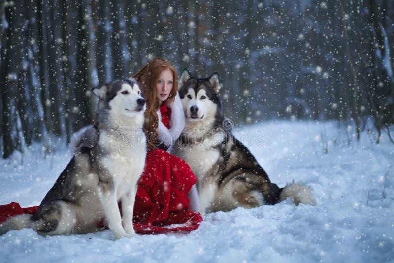 Aantrekkelijke vrouw met de honden royalty-vrije stock foto's