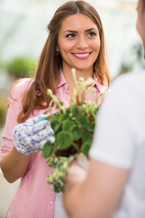 Aantrekkelijke vrouwelijke het voeden bloem royalty-vrije stock fotografie