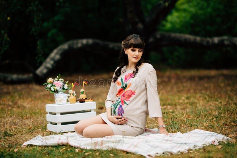 Aantrekkelijke zwangere vrouw op geruite deken in het de herfstpark royalty-vrije stock foto