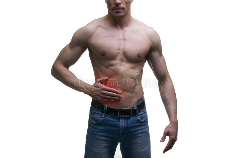 Aanval van blindedarmontsteking, pijn in rechterkant van spier mannelijk die lichaam, op witte achtergrond wordt geïsoleerd royalty-vrije stock afbeelding