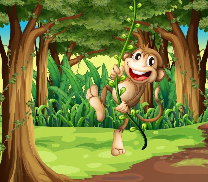 Aap het spelen met de wijnstokbomen in het midden van het bos stock illustratie