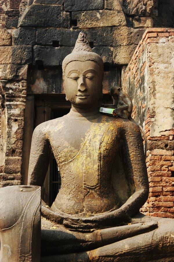 Aap op een Boeddhistisch standbeeld in Thailand stock foto
