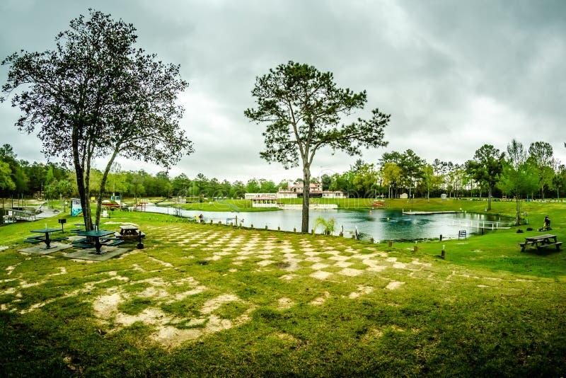 Aard bij de draaikolklentes Florida op regenachtige dag stock foto