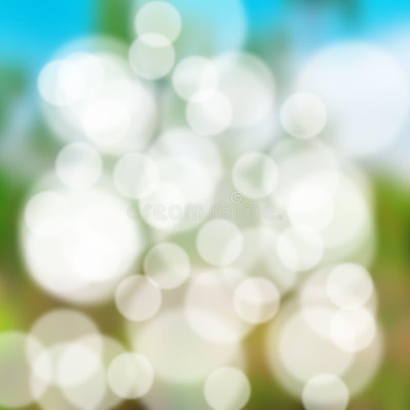 Aard bokeh met groen gras in ochtendlicht royalty-vrije stock fotografie