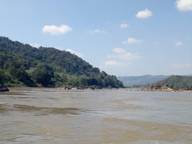in aard is de rivier en de groene boom stock afbeeldingen