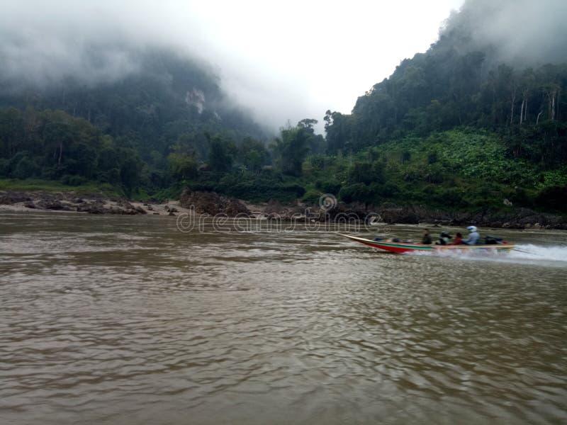 in aard is de rivier en de groene boom stock foto's