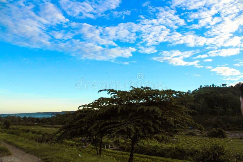 Aard - een mooie blauwe hemel en een groen land stock foto