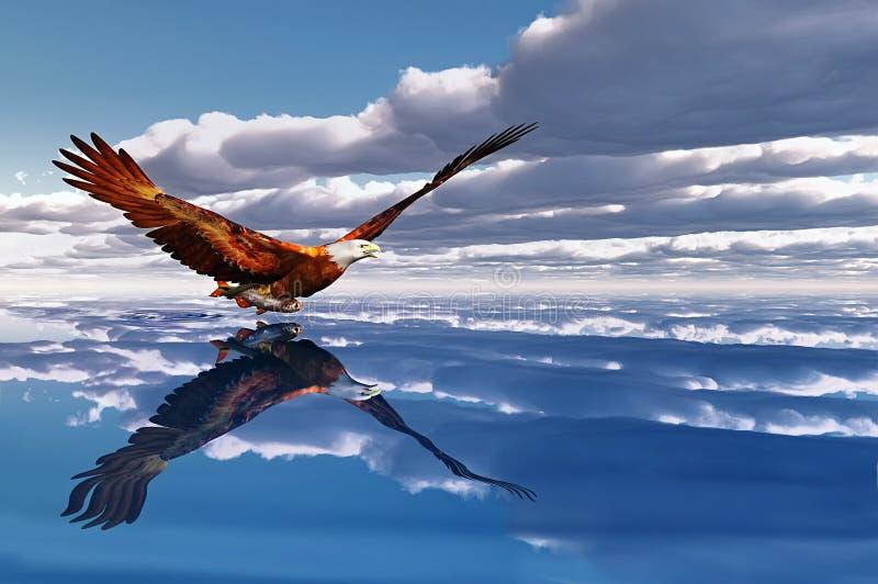 Aard en adelaar vector illustratie