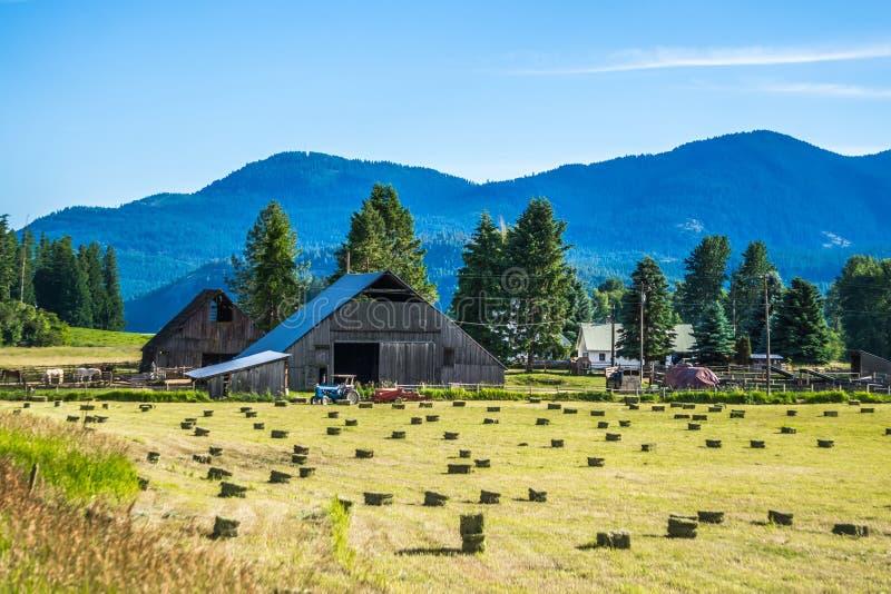 Aard en landschappen in de reserve van Spokane dichtbij de rivier van Spokane Colombia royalty-vrije stock fotografie