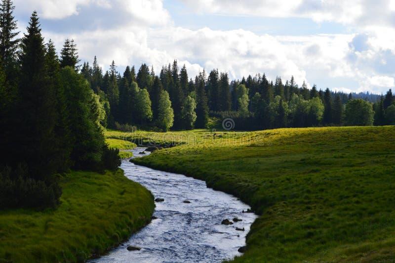 Aard en rivier royalty-vrije stock afbeeldingen