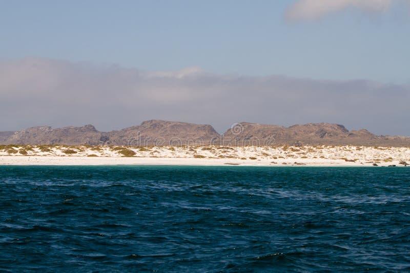 Aard en wildreservaat Chili royalty-vrije stock fotografie