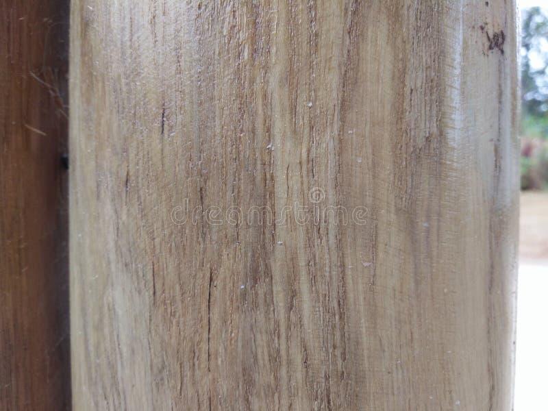 aard houten boom stock afbeelding