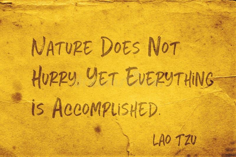 Aard niet haast Lao Tzu stock illustratie