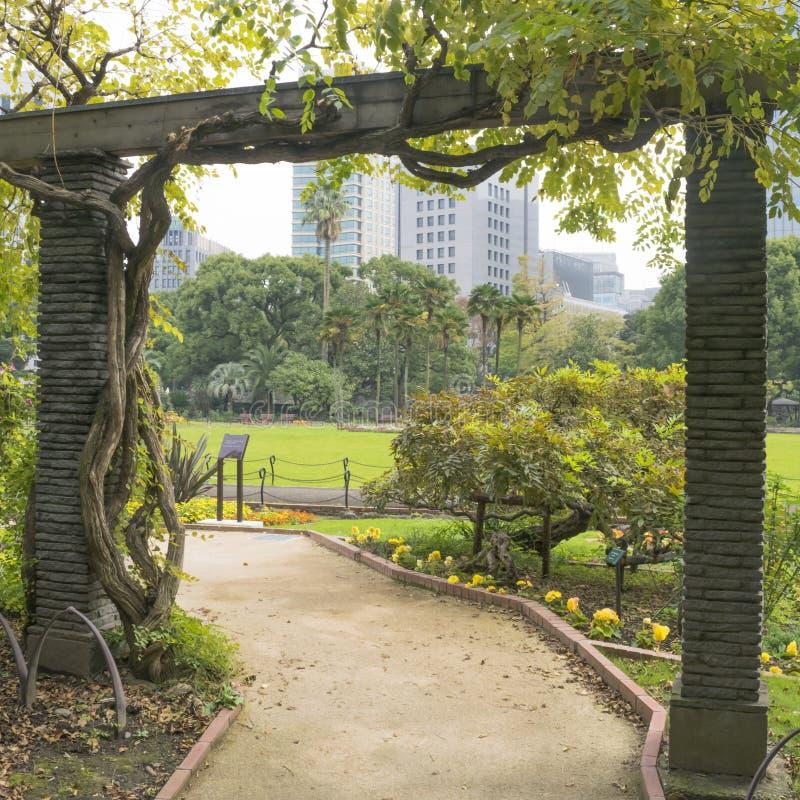 Aard of stedelijke achtergrond met mening van Hibiya-park in Tokyo stock afbeelding