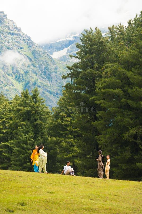 Aard van de Berg van de Toeristen van Kashmir van Pahalgam de Indische stock afbeeldingen