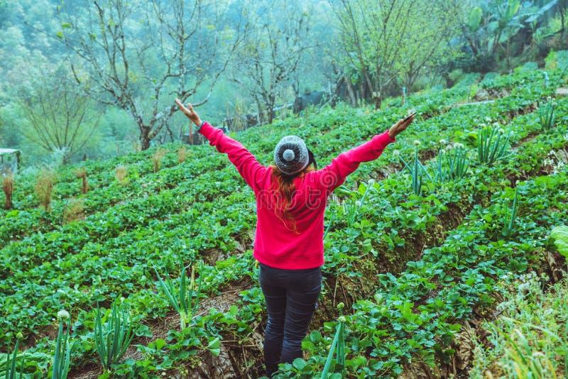 Aard van de vrouwen de Aziatische reis De reis ontspant Houd aardbei in het landbouwbedrijf r Bij de zomer stock foto