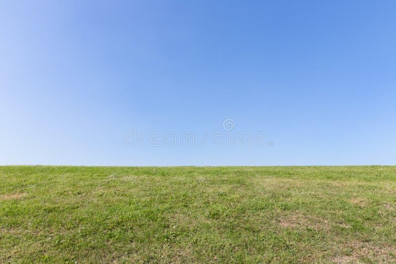 Aardachtergrond, groen gras met blauwe hemel royalty-vrije stock foto's