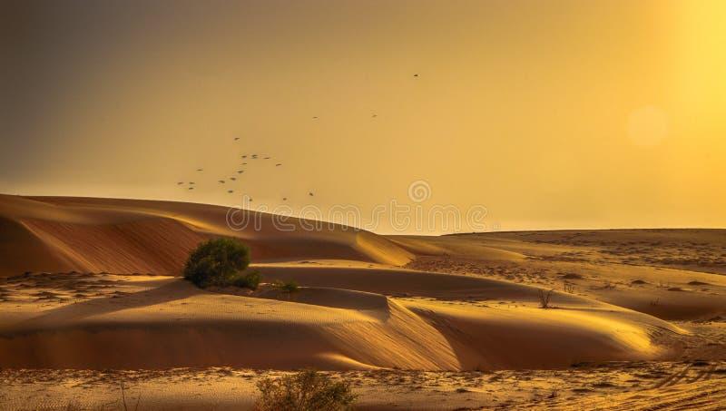 Aardachtergrond van zand van de woestijnduinen Het is gesitueerd in Marokko De Sahara is een woestijn op het Afrikaanse continent royalty-vrije stock foto's