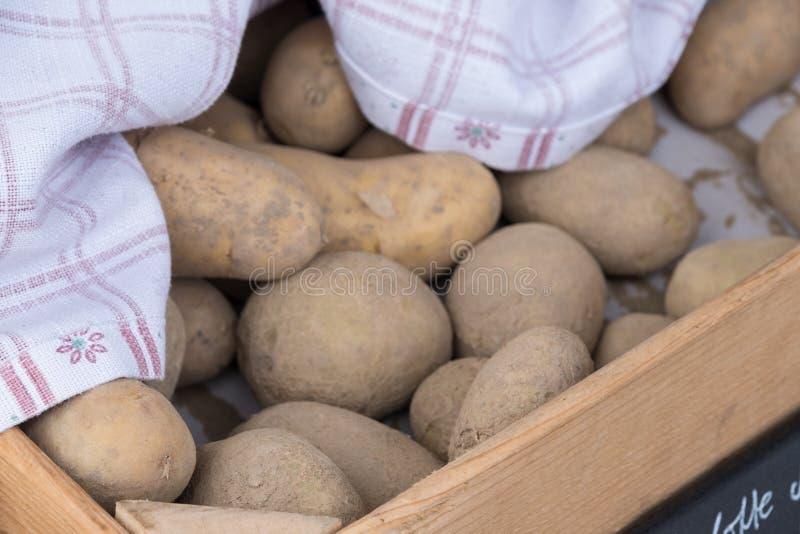 Aardappel in de doos royalty-vrije stock foto